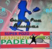 PARTIDO: SUPER QUEDADA PADEL TIPO POZO CON RANKING