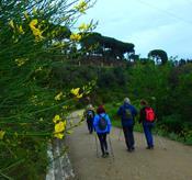 TAST DE NORDIC WALKING A COLLSEROLA