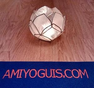 Iniciación a Yoga con Amiyoguis