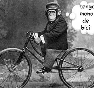 Ciclistas salerosos