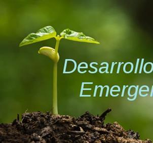 Desarrollo Emergente