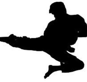 Karate  total