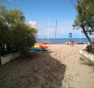 AMANTES DEL MAR Y DEL SURF
