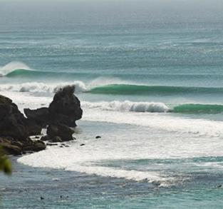 AMANTES DEL SURF