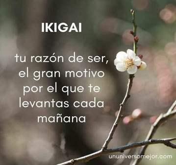 TALLER: REBIRTHING: LA BUSQUEDA DEL IKIGAI O RA...