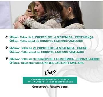 TALLER: 1ER PRINCIPIO DE LA SISTÉMICA PERTENENC...