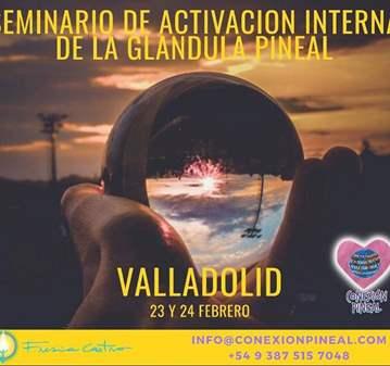 SEMINARIO: ACTIVACION INTERNA DE LA GLANDULA PI...