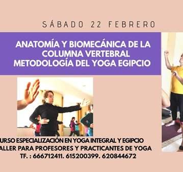 CLASE: ANATOMÍA Y BIOMECÁNICA DE LA COLUMNA VER...