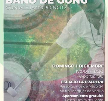 CONCIERTO: BAÑO DE GONG CON ALEJANDRO NOTA