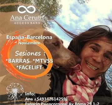 CLASE: BARRAS DE ACCESO A LA CONCIENCIA