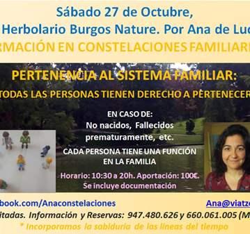 TALLER: BURGOS: FORMACIÓN CONSTELACIONES FAMILI...