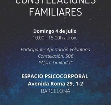 CLASE: CONSTELACIONES FAMILIARES