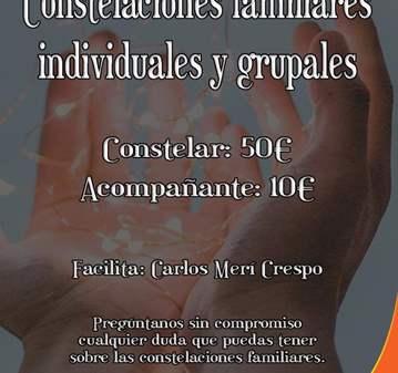SESIÓN: CONSTELACIONES FAMILIARES INDIVIDUALES ...