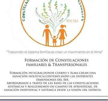 CURSO: CONSTELACIONES FAMILIARES Y TRANSPERSONA...