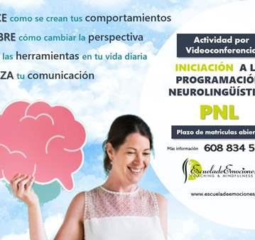 VIDEOCONFERENCIA DEL CURSO INICIACION A PNL