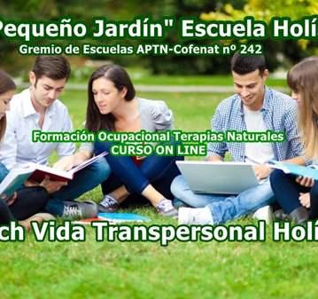 CURSO ON LINE COACH VIDA  TRANSPERSONAL HOLÍSTICO