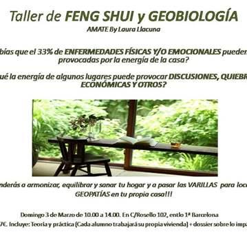 TALLER: DE FENG SHUI PARA VIVIENDAS I GEOBIOLOGÍA