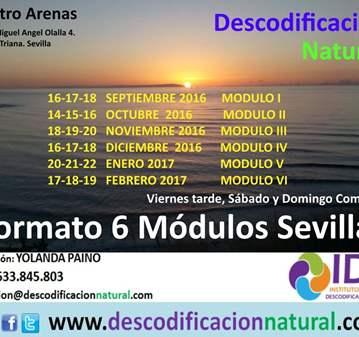 CURSO: DESCODIFICACION NATURAL 6 MODULOS SEVILLA