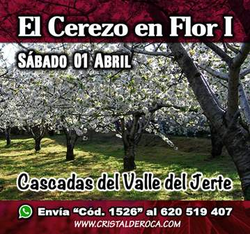 EXCURSIÓN: EL CEREZO EN FLOR-CASCADAS DEL VALLE...