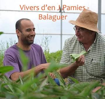 QUEDADA: ENCUENTRO GRUPO PLANTAS MEDICINALES Y ...