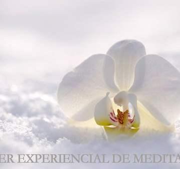 TALLER: EXPERIENCIAL DE MEDITACIÓN