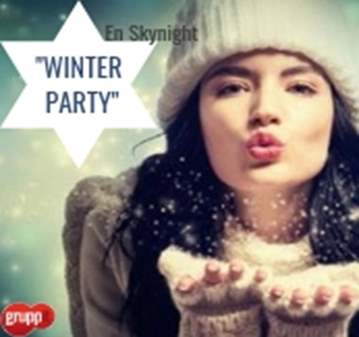 FIESTA: WINTER PARTY EN SKYNIGHT