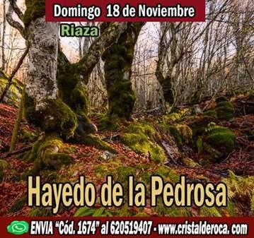 RUTA: HAYEDO DE LA PEDROSA (SOMOS 40) FALTAN 4