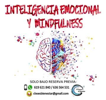 TALLER: INTELIGENCIA EMOCIONAL Y MINDFULNESS
