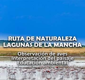 EXCURSIÓN: LAGUNAS MANCHEGAS ORNITOLOGIA OBSERV...