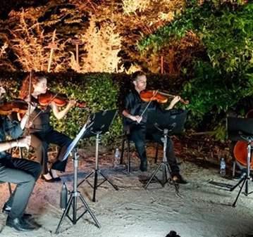 VISITA GUIADA: PASEOS MUSICALES DEL BOTÁNICO.