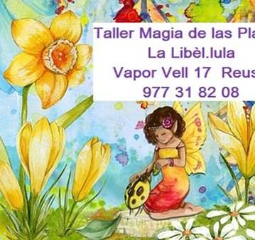 TALLER: PLANTAS Y MAGIA