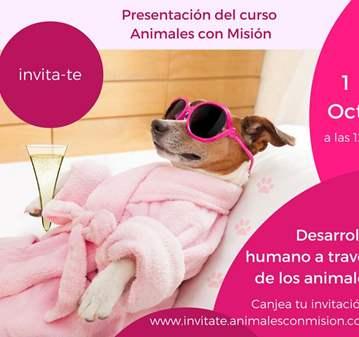 CHARLA: PRESENTACIÓN DEL CURSO DE ANIMALES CON ...