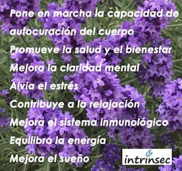 SESIÓN: PSICOTERÀPIA INTEGRATIVA CON REIKI DE 9...