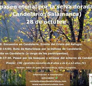 RUTA DE NATURALEZA POR CANDELARIO (SALAMANCA).