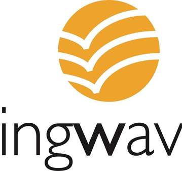 SESIÓN DE COACHING WINGWAVE®.
