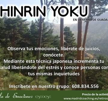 EXCURSIÓN: SHINRIN YOKU EN GUADARRAMA
