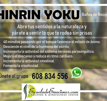 SHINRIN YOKU EN LA SIERRA DE GUADARRAMA
