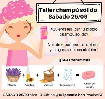 TALLER DE CHAMPÚ SÓLIDO