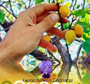 CURSO: TALLER DE EXPRESIÓN Y CREATIVIDAD
