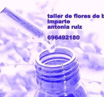 TALLER FLORES DE BACH