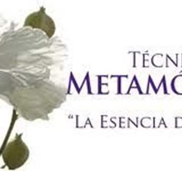 TALLER TECNICA METAMORFICA