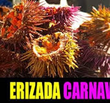 EXCURSIÓN: VISITA A CÁDIZ ERIZADA CARNAVAL 2020