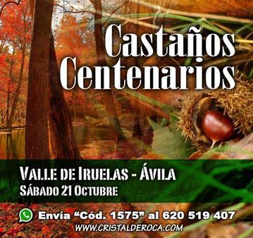 RUTA: CASTAÑOS CENTENARIOS - VALLE DE IRUELAS (SOMOS 35)
