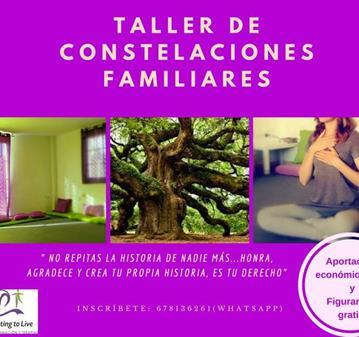 TALLER: CONSTELACIONES FAMILIARES