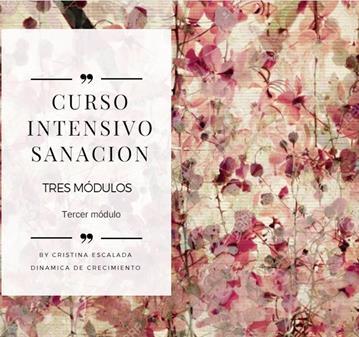 TALLER: CURSO INTENSIVO DE SANACIÓN - MÓDULO 3