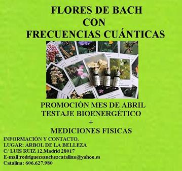 JORNADA: FLORES DE BACH MÁS FRECUENCIAS CUÁNTICAS