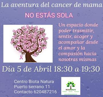 REUNIÓN: LA AVENTURA DEL CANCER DE MAMA