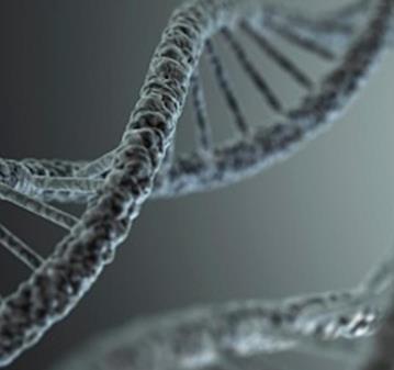 CONFERENCIA: MIEDO & ADN