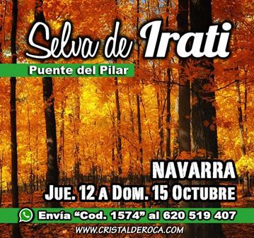 VIAJE: SELVA DE IRATI - NAVARRA