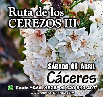 RUTA: VALLE DEL JERTE - RUTA DE LOS CEREZOS III